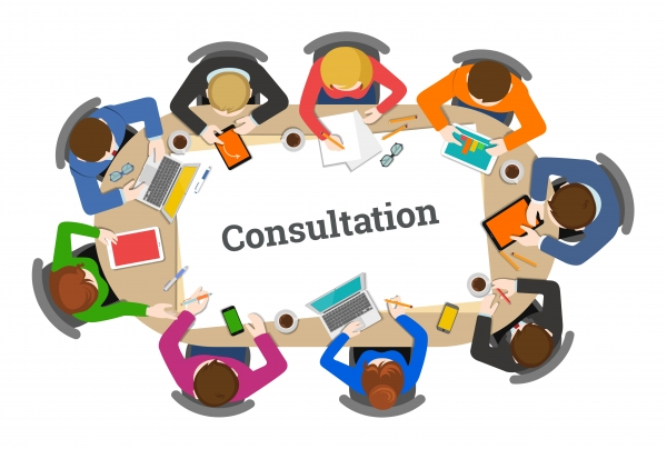 Consultation Template - Children Not In School